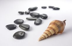 Overzeese geur - stenen en shell royalty-vrije stock afbeelding