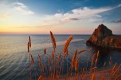 Overzeese golf op een zonsondergang Stock Foto's