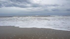 Overzeese golven stock videobeelden