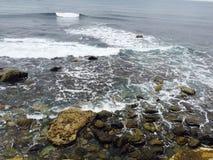 Overzeese golven die op rotsen verpletteren Stock Foto