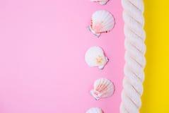 Overzeese kabel en kammosselshells op gekleurde achtergronden met negatief Royalty-vrije Stock Fotografie