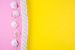 Overzeese kabel en kammosselshells op gekleurde achtergronden met negatief Royalty-vrije Stock Foto
