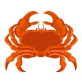 Overzeese krab vectorillustratie Stock Foto