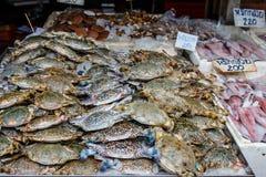 Overzeese krab verse zeevruchten in markt Stock Afbeeldingen