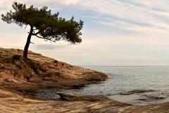 Overzeese kust Royalty-vrije Stock Afbeeldingen
