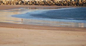 Overzeese kust Mening van hierboven Stock Fotografie