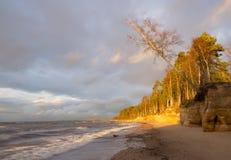 Overzeese kust met zandsteenklippen Royalty-vrije Stock Foto