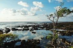 Overzeese kust naast het dorp waar de leden om aan bad gebruikten te komen stock afbeelding
