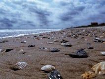 Overzeese kust overzeese shells royalty-vrije stock fotografie