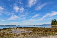 Overzeese kust tijdens eb dichtbij Stanley Park in Vancouver, Canada Royalty-vrije Stock Foto