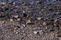 Overzeese mening van strand met zonnige hemel Royalty-vrije Stock Foto's