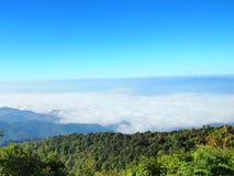 Overzeese mist op Berg Stock Fotografie