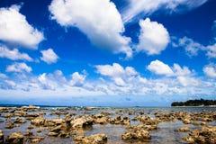 Overzeese rotsen en wolken Stock Fotografie