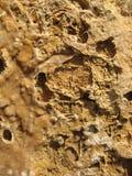 Overzeese rotstextuur stock afbeeldingen