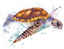 Overzeese schildpad De illustratie van de zeeschildpadwaterverf Onderwaterwoord Royalty-vrije Stock Fotografie
