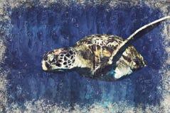 Overzeese schildpad Marine Life-koraalrif onderwater Digitaal Art Impas vector illustratie