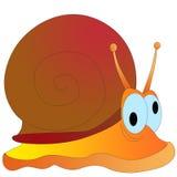 Overzeese shell Royalty-vrije Stock Afbeelding