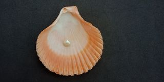 Overzeese shell en parel met zwart geweven behang als achtergrond, royalty-vrije stock fotografie