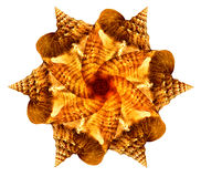 Overzeese shell mandala Stock Fotografie