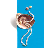 Overzeese shell met een parel parelt Royalty-vrije Stock Fotografie