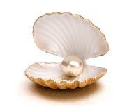Overzeese shell met parel Stock Afbeelding