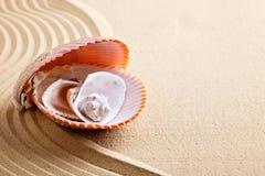 Overzeese shell op het overzeese strand De zomerrust Stock Foto's