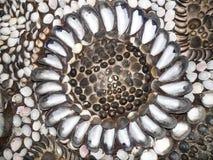 Overzeese shells Royalty-vrije Stock Afbeeldingen