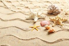 Overzeese shells Royalty-vrije Stock Foto's