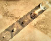 Overzeese Shells bezinning met een waterglas stock fotografie
