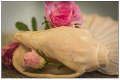 Overzeese Shells & Bloemen Stock Foto