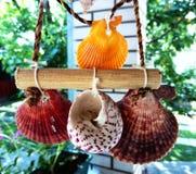 Overzeese Shells decoratie het hangen stock afbeeldingen