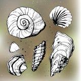 Overzeese shells decoratieve pictogrammen Royalty-vrije Stock Foto's
