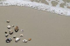 Overzeese shells en wipschakelaars op zand Het strandachtergrond van de zomer bovenkant Royalty-vrije Stock Foto's