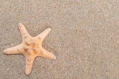 Overzeese shells met zand als achtergrond Stock Afbeelding