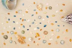 Overzeese shells met zand als achtergrond Vlak leg Hoogste mening royalty-vrije stock foto's