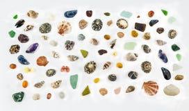 Overzeese Shells n meer Zeeschelpen! stock fotografie