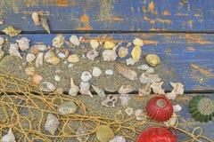 Overzeese Shells op een Blauwe Achtergrond De zomer reizende tijd Overzeese vakantieachtergrond met diverse shells Plaats voor uw Stock Afbeeldingen