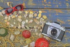 Overzeese Shells op een Blauwe Achtergrond De zomer reizende tijd Overzeese vakantieachtergrond met diverse shells, zonnebril en  Royalty-vrije Stock Foto