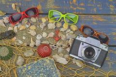 Overzeese Shells op een Blauwe Achtergrond De zomer reizende tijd Overzeese vakantieachtergrond met diverse shells, zonnebril en  Stock Fotografie
