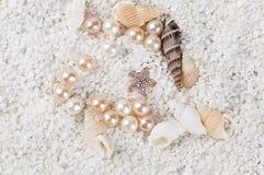 Overzeese shells op het zand Royalty-vrije Stock Fotografie