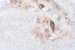 Overzeese shells op het zand Stock Afbeelding