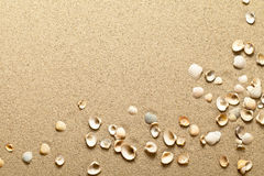 Shells op Zand Royalty-vrije Stock Foto
