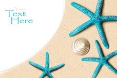 Overzeese Shells op zand Het strandachtergrond van de zomer Hoogste mening Stock Foto's