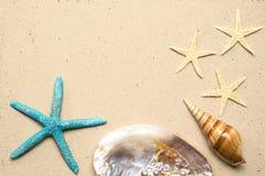 Overzeese Shells op zand Het strandachtergrond van de zomer Hoogste mening Stock Foto