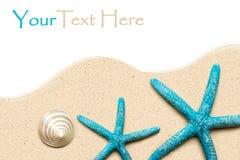 Overzeese Shells op zand Het strandachtergrond van de zomer Hoogste mening Royalty-vrije Stock Foto's