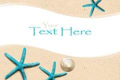 Overzeese Shells op zand Het strandachtergrond van de zomer Hoogste mening Royalty-vrije Stock Afbeeldingen
