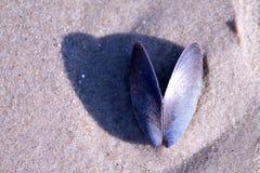Overzeese steen op strandzand royalty-vrije stock afbeeldingen