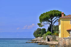 Overzeese steenachtige kust met boom en gebouwen onder blauwhemel Royalty-vrije Stock Fotografie