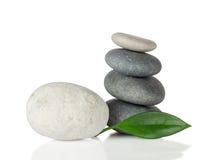 Overzeese stenen met blad Royalty-vrije Stock Fotografie