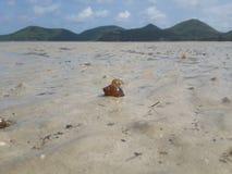 Overzeese stranden royalty-vrije stock afbeeldingen